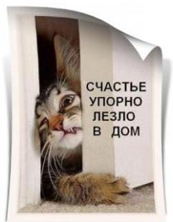 Аватар пользователя Женя (Гнедой)